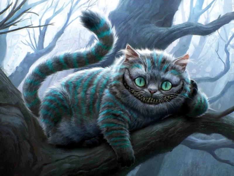 управление товарными запасами чеширский кот