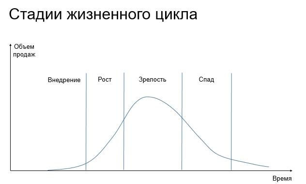Стадии жизненного цикла
